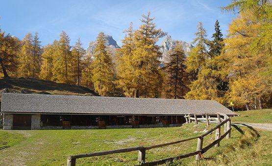 Brunch in den Alpen