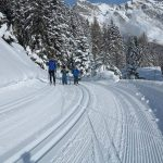 Ski de fond accompagné
