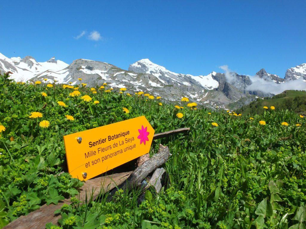 Sentier botanique_panneau